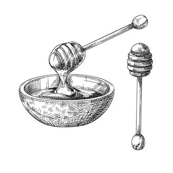 꿀과 나무 꿀 숟가락이 있는 그릇의 스케치. 벡터 일러스트 레이 션