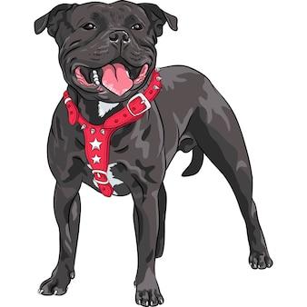 Эскиз черной собаки стаффордширский бультерьер породы в красном воротнике