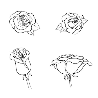 Эскиз набор цветов розы. карандашный рисунок цветы с листьями на стебле. графические эмблемы. нарисованные от руки контурные линии и штрихи.