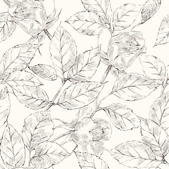 Sketch roses pattern