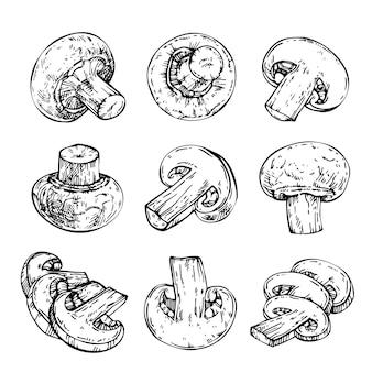 きのこのインク刻印シャンピニオン手描きイラストのスケッチセット