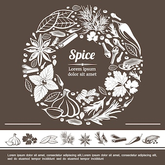 Sketch spices round monochrome concept