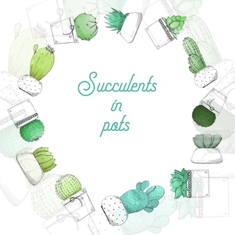 Sketch succulents in pots. stylized watercolor. vector illustration.