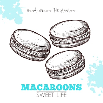 Sketch of sweet macaroons isolated on white and blue