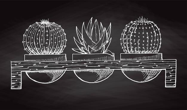 黒板に隔離された木製のスタンドに、鉢植えの多肉植物を3つスケッチします。ベクトルイラスト。