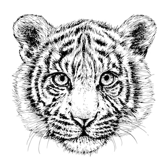Sketch tiger portrait hand drawn ink illustration black and white tiger head 2022 new year