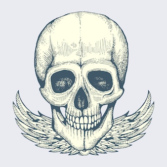 Sketched human skull with wings  vintage biker style poster label