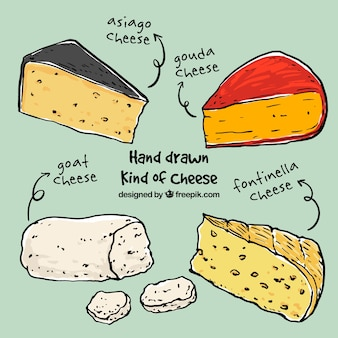 Sketches different cheeses