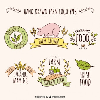 Sketches farm logos with fresh products