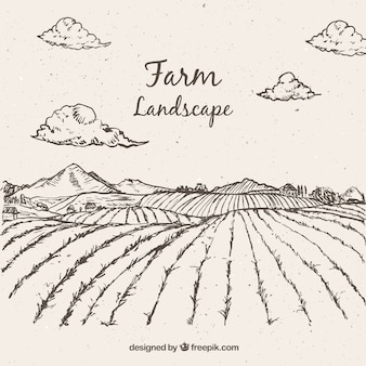 Sketches farming landscape