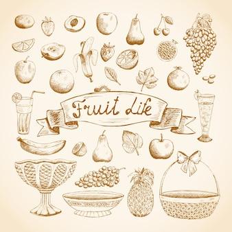 수분이 많은 신선한 과일의 스케치