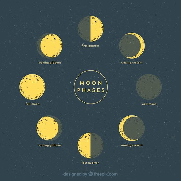 moon phases vectors photos and psd files free download rh freepik com