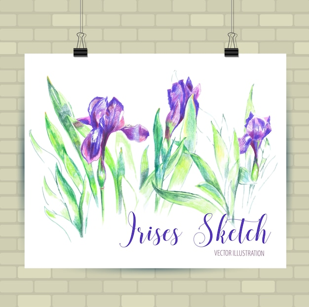 Sketching illustration in vector format. poster with beautiful flowers.