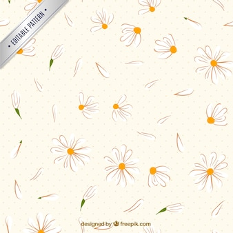 Sketchy daisies pattern