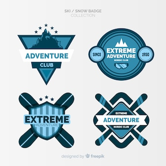 Ski and snow badges collection