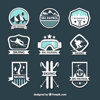 Ski badge collection