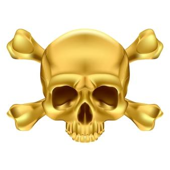 두개골과 이미지