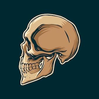 ヴィンテージスタイルの頭蓋骨描画側面図。ベクトルイラスト。