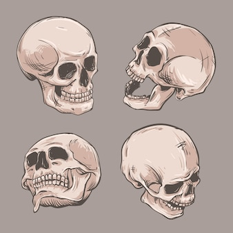 Фигура черепа под разными углами