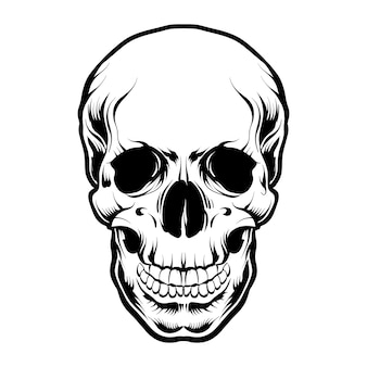Skull head vector black and white isolated