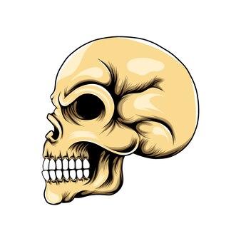 구멍 눈과 코가있는 두개골 머리와 옆으로 포즈