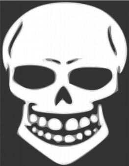 Skull human x-ray