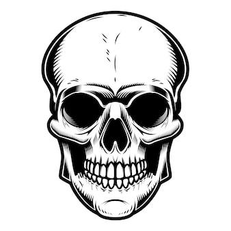흰색 배경에 두개골 그림입니다. 포스터, 상징, 기호, 배지 요소입니다. 삽화