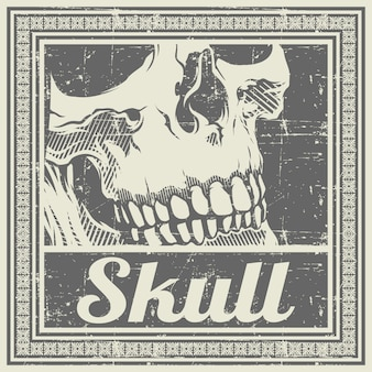 Skull retro,vintage,detail hand drawing ,isolated,
