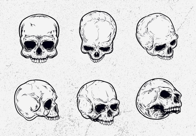 Skull set pack  illustration