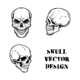 Skull set vector illustration