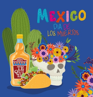 Skull tequila taco and mexico day of the dead design, mexican culture tourism theme