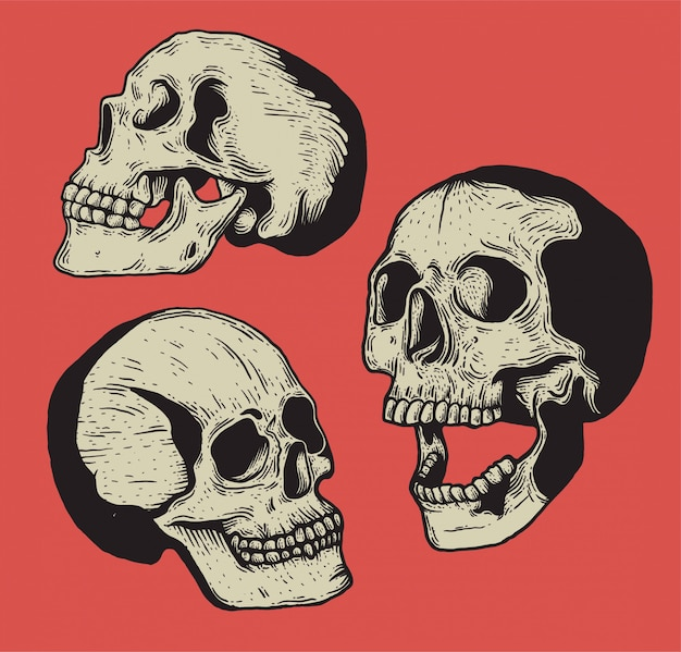 頭蓋骨ヴィンテージ彫刻スタイル分離手描きイラスト。