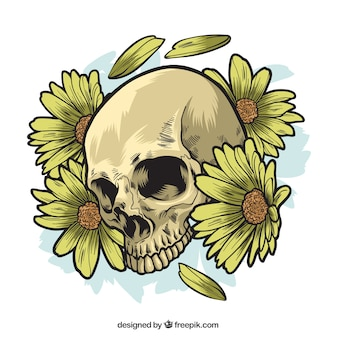 Skull with hand drawn daisies