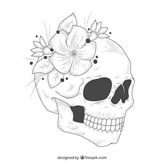 Cranio con fiori disegnati a mano decorativi