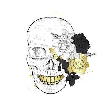 バラの頭蓋骨。