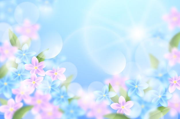 Sky and pink flowers realistic blurred spring background
