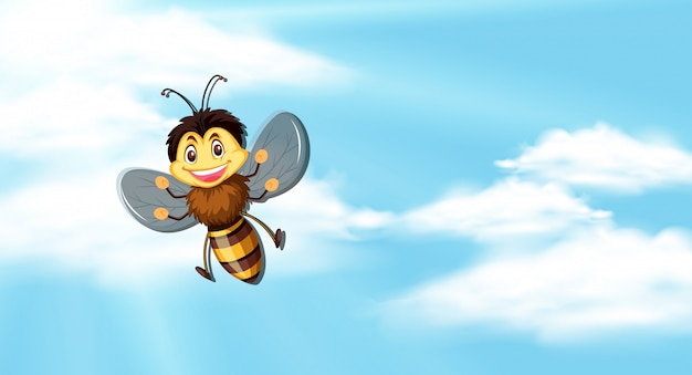 Sky  with bee flying