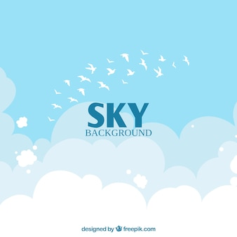 Sky with clouds and birds background in flat style
