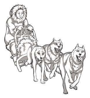Ездовые собаки, помощники животных. линейный рисунок собак, управляющих человеком, традиции северных народов, черно-белый рисунок