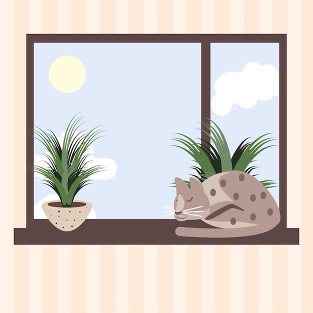 Спящая кошка в окне