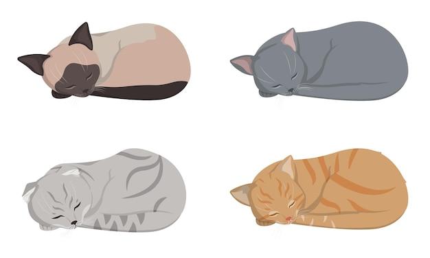 다른 고양이 자고. 샴, 귀가 늘어진, 빨간 머리와 러시아 파란 고양이 그림