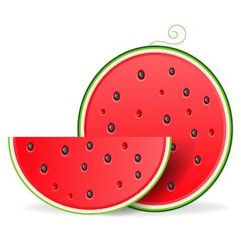 Slice watermelon. fruit illustration for farm market menu. healthy food