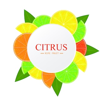 Дольки цитрусовых. шаблон круглая рамка. желтый лимон, спелый апельсин, сочный грейпфрут и кислый лайм. вегетарианский дизайн. векторная иллюстрация.