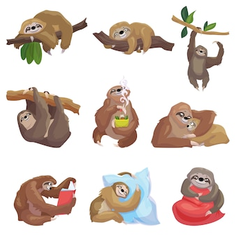 Sloth icons set. cartoon set of sloth icons