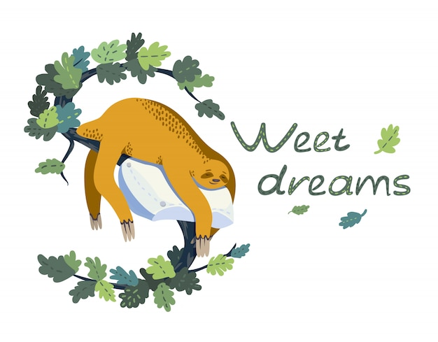 Sloth sleeping on pillow on branch. vector illustration on isolated background with text.