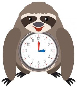 Sloth themed clock white background