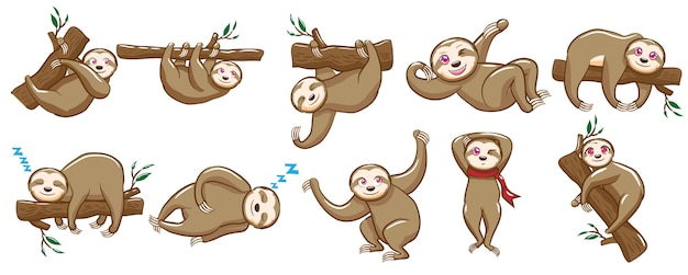 Sloth vector set clipart