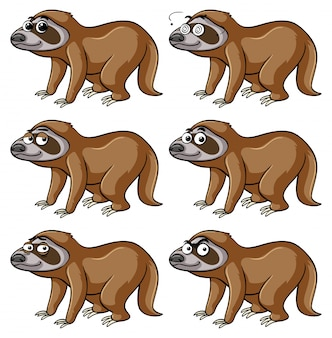 Sloth with different emotions