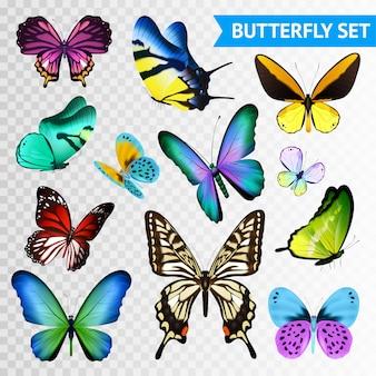 大小の色とりどりの蝶セットの透明な背景に分離