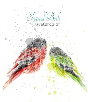 小さな鳥の水彩